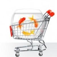 Модуль импорта продуктов для opencart 2.0